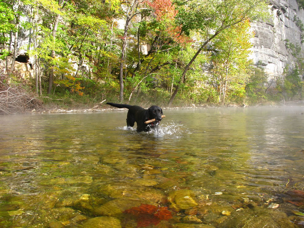 Chilly-Morning-Fetch-at-Fall-Break-Buffalo-National-River-Arkansas