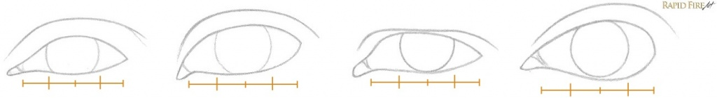 How to Draw Different Eye Shapes Iris Sizing Example RFA