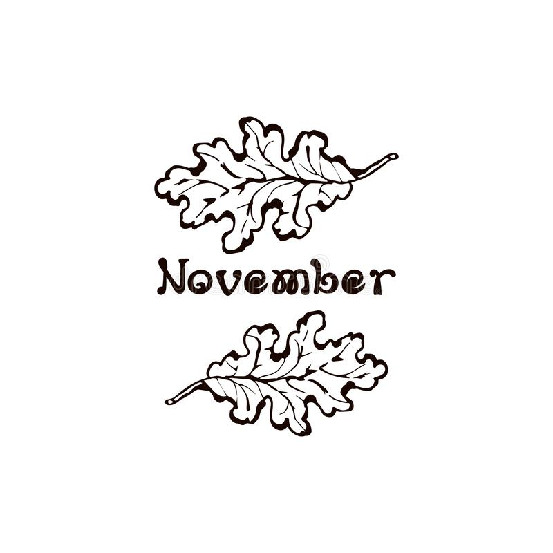 Hand Drawn Oak Leaves with Handwritten Text. Isolated on white background. Inscription - November royalty free illustration