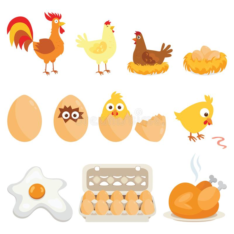 Set of farm animals, vector stickers with chicken family on white isolated background. royalty free illustration