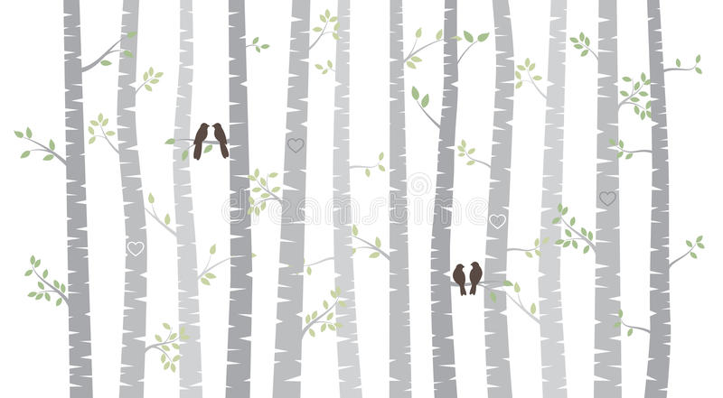 Vector Birch or Aspen Trees with Autumn Leaves and Love Birds. Aspen Trees with Autumn Leaves and Love Birds or Bird Couples stock illustration