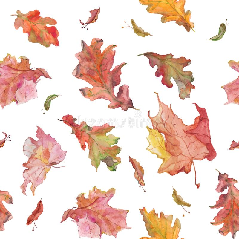 Watercolor hand drawn autumn oak and maple leaves and seeds seamless pattern in red color. Watercolor hand drawn seamless tile with autumn oak and maple leaves royalty free illustration