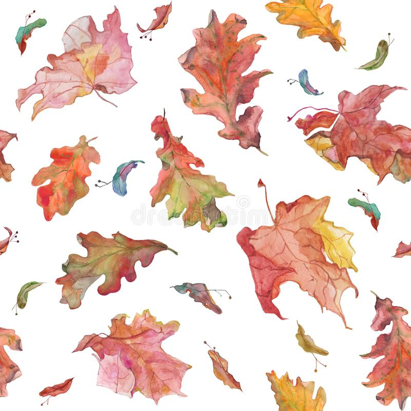 Watercolor hand drawn autumn oak and maple leaves and seeds seamless pattern. Watercolor hand drawn seamless tile with autumn oak and maple leaves and seeds on stock illustration
