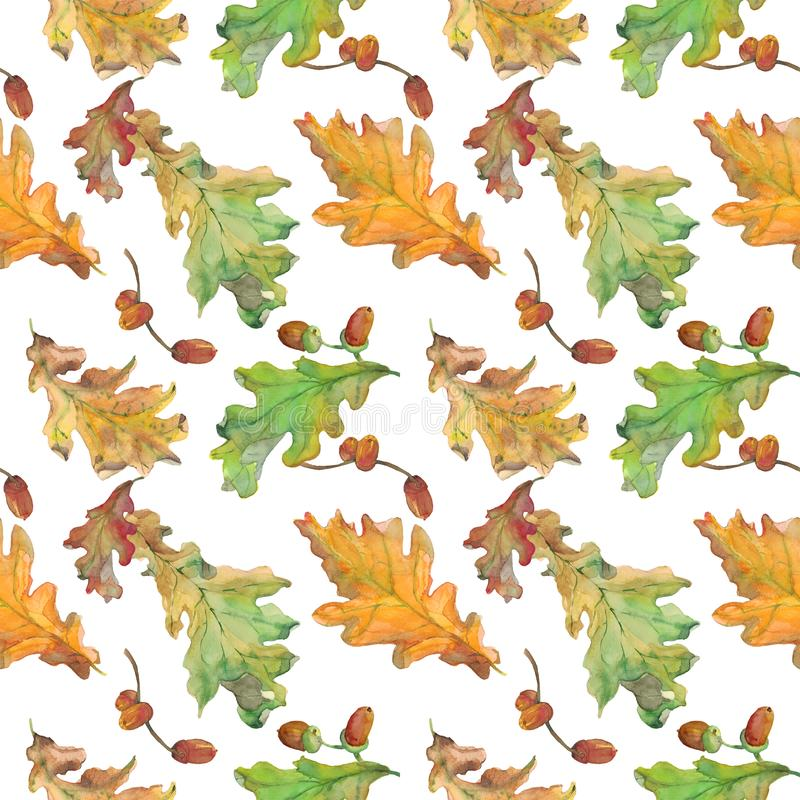 Watercolor hand drawn seamless pattern with autumn green and yellow oak leaves and acorns. On white background. Design for textile, packaging, season decor and royalty free illustration