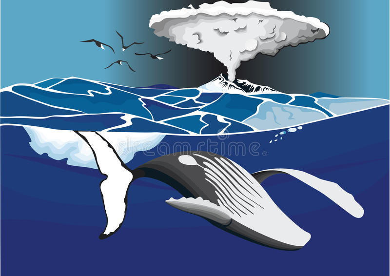 Drawing in color of whale under volcano. A whale swimming under volcano vector illustration