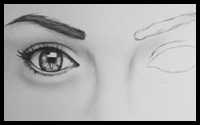 Drawing Eyes From a Portrait Drawing Class