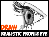 How to Draw Realistic Eyes from the Side Profile View – Step by Step Drawing Tutorial
